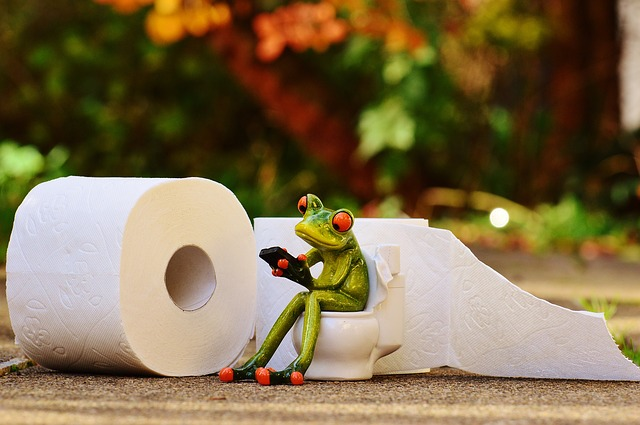 ceramic frog on toilet