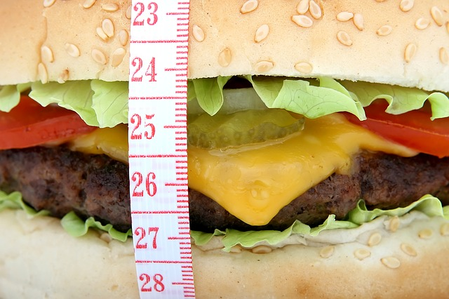 fat cheeseburger