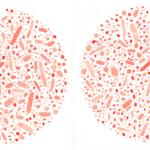 Stop the Spread of Superbugs - virus-pair