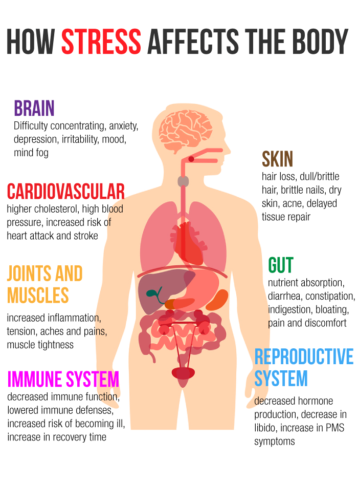 How Stress Affects The Body Dr James L Wilson S