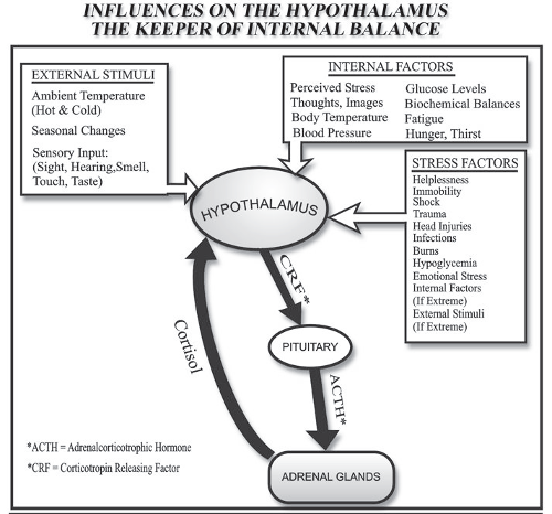 influencers-on-hypothalamus